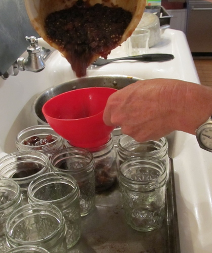 Alligator Hall, Sarah Sanford, Cooking and Grilling, Chutney, Peach, Canning